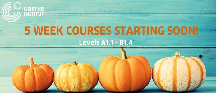 5-week courses slider graphic