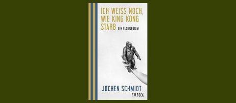 Jochen Schmidt : Lob der Bommelmütze