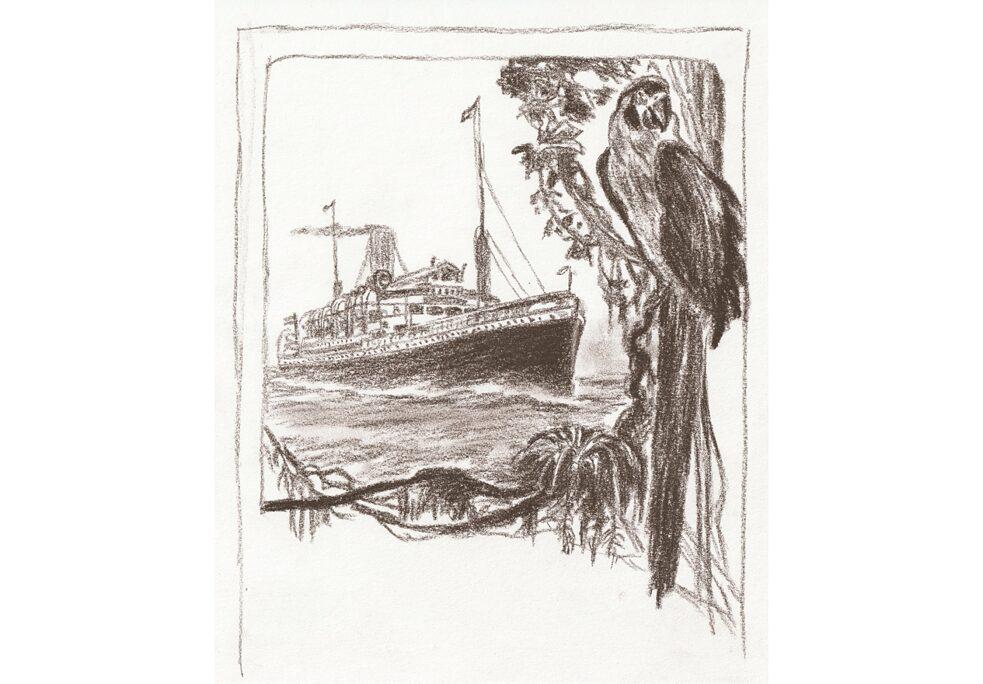 Desenho baseado em peça publicitária da Hamburg-Südamerikanische Dampfschifffahrts-Gesellschaft para a rota Hamburgo-Brasil, no ano de 1910.