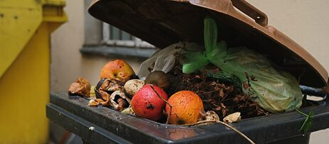 Lebensmittelverschwendung : Diese KI rettet Essen vor dem Müll
