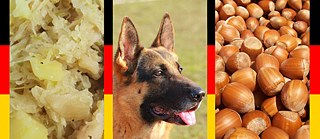 Sauerkraut, German shepherd and Hazelnut, Collage