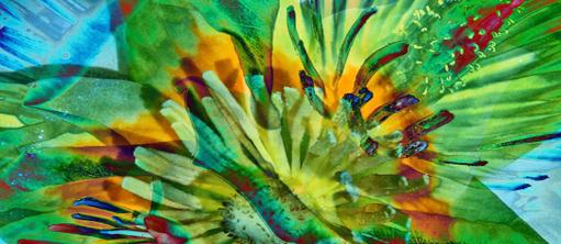 Bildausschnitt Blume