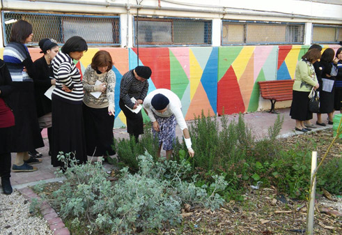 Community gardening in Kiryat Gat (in the south of Israel)