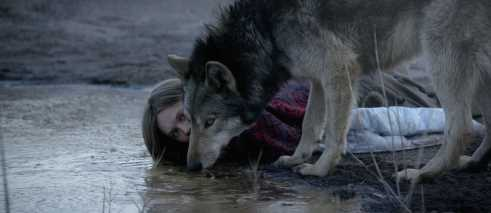 girl and wolf crouching down at stretch of water