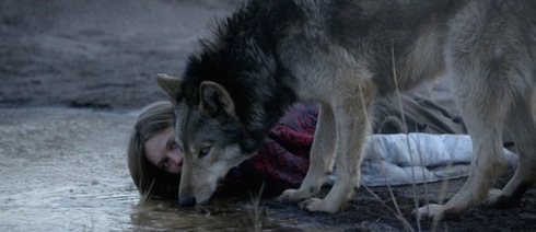 a girl and a wolf are crouching down beside a stretch of water