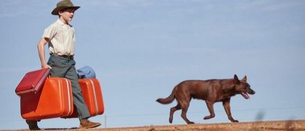 Red Dog: True Blue screens in Berlinale's Generation Kplus program.