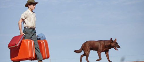Red Dog: True Blue screens in Berlinale's Generation Kplus program on February 10, 11, 12 and 16.