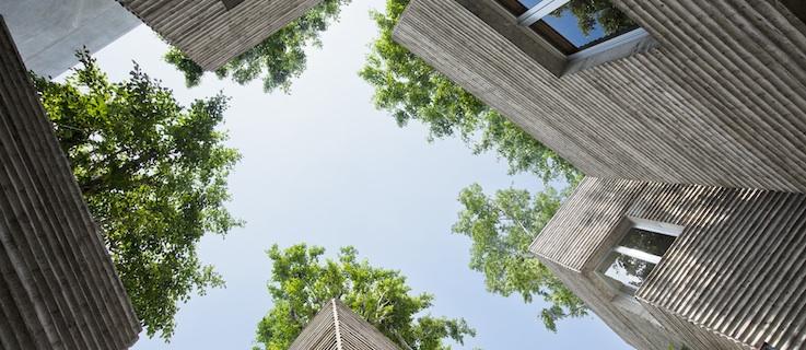 magazin soziale architektur in vietnam b ume die aus h usern wachsen goethe institut. Black Bedroom Furniture Sets. Home Design Ideas