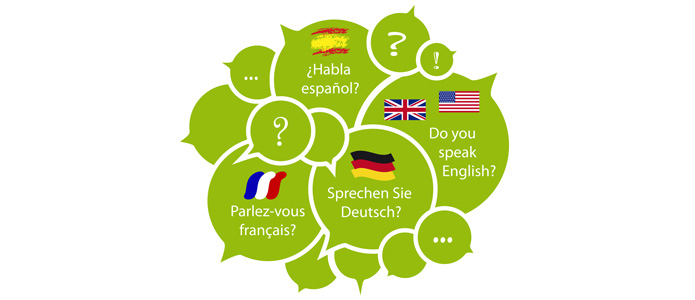 Many countries have several official languages