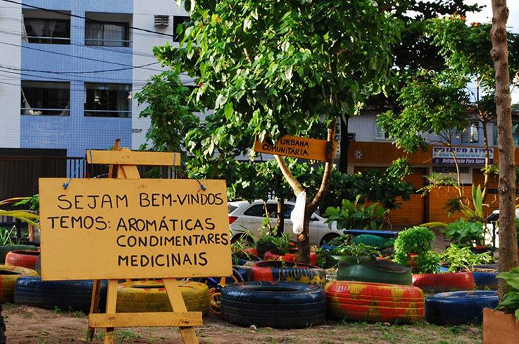 Welcome! We have aromatic herbs, spices and medicinal herbs.