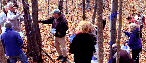 Volunteers painting one of several 1/3 mile Blued Trees measures, in Rensselaer County, New York.
