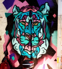 Matt Branagan got into maker culture through his appreciation of the democratic power of street art. Hence the Work-Shop's walls are covered in beautiful street art.
