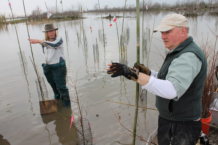 Mary O'Brien and Daniel McCormick working on a project in Louisiana.