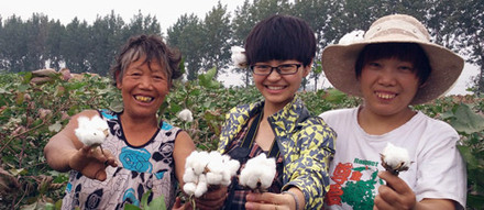 Ladies from Buzhidao in the cotton fields