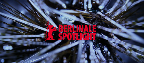 Berlinale Spotlights II: From the Rising of the Sun