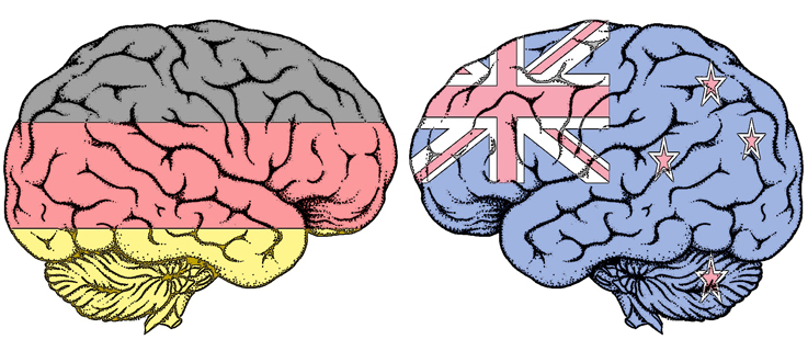 Multilingualism changes the brain's structure and function.