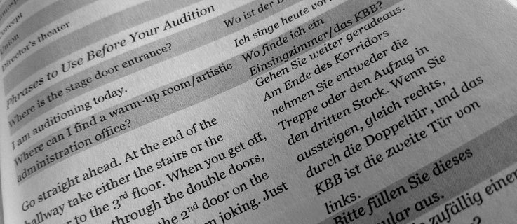 "An example of phrases to use before your audition from ""What The Fach?!"" by Philip Shepard"
