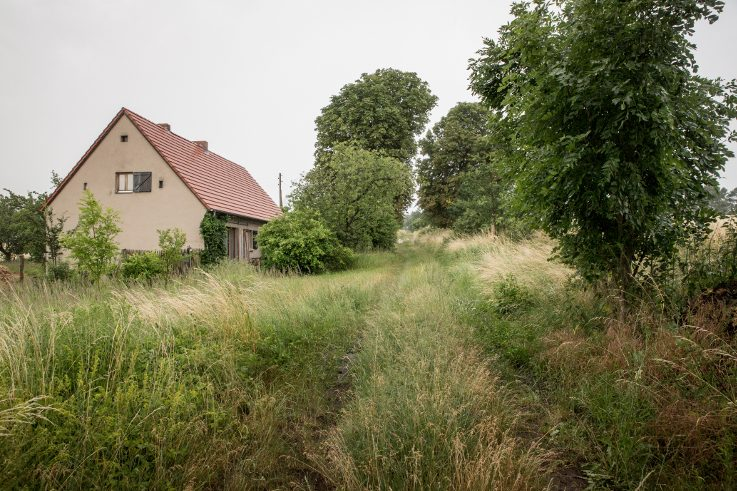 The Schlossallee in Vierlinden, Brandenburg, deserves its name only to a limited extent. The overgrown path leads to Schloss Neuhardenberg after six kilometres. But a test of courage awaits: The avenue crosses a military training area.