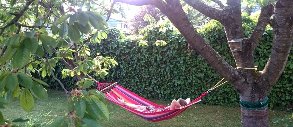 A young woman is lying in a hammock in the garden.