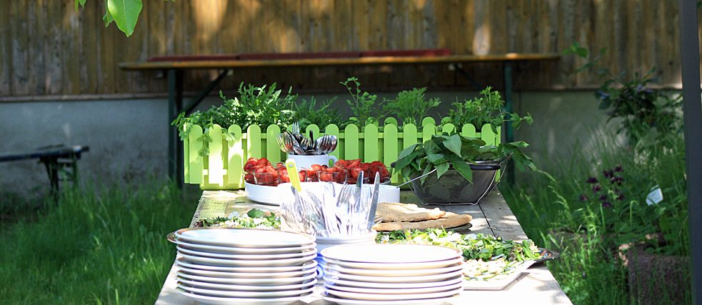 Buffet in the countryside: salad with self-collected herbs