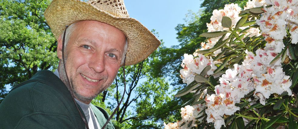 Gardener Thomas Heller with rhododendrons
