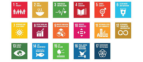 Sustainable development goals © UNITED NATIONS