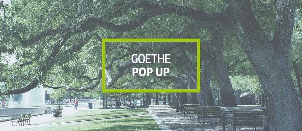Goethe Pop Up Houston