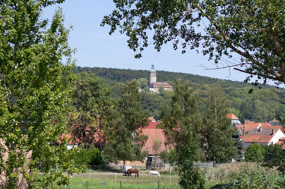 Perched atop a small hill, Schloss Tonndorf is clearly visible from far and wide. In 2005, the 60 or so people that live there – who include many families – formed a cooperative. They want to preserve the heritage-protected complex, live together in solidarity and lead an ecological lifestyle.