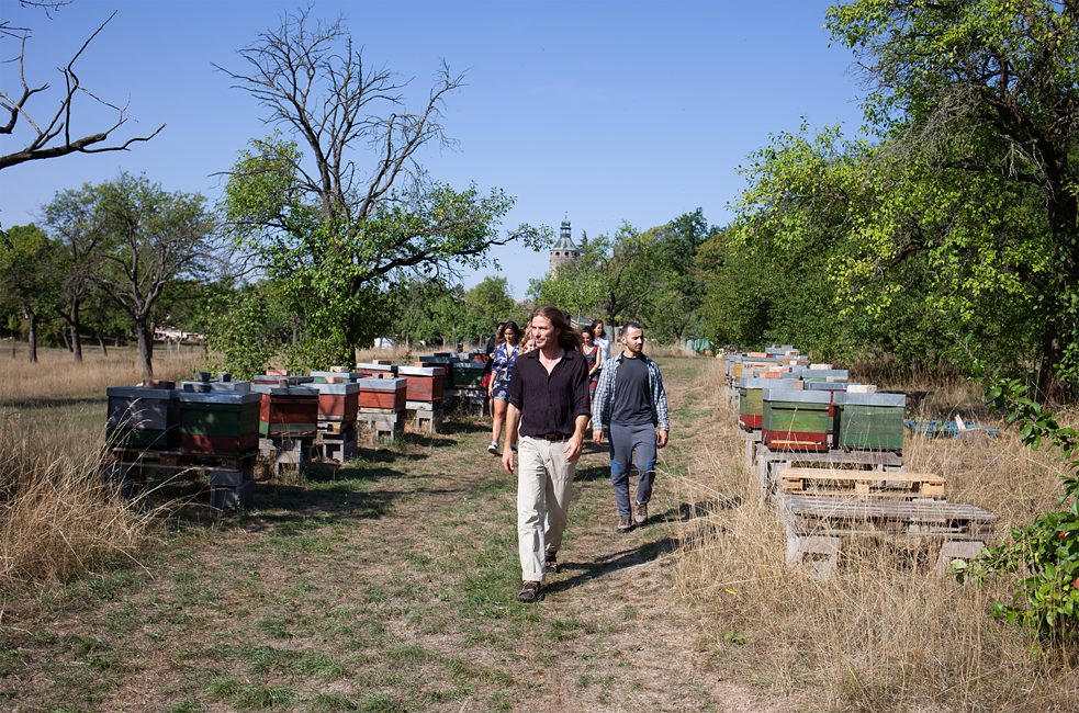 Architect Thomas Meier is a co-founder of the community. In the last 13 years he has learnt a great deal about animal husbandry and fruit-growing. He spends two-thirds of his day outdoors, among other things attending to the 150 or so colonies of bees that make up the Schloss Tonndorf apiary.