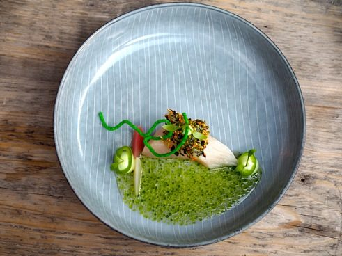 Hamachi, leek vinaigrette, jalapeno mayo, pickled and marinated radish - image gallery