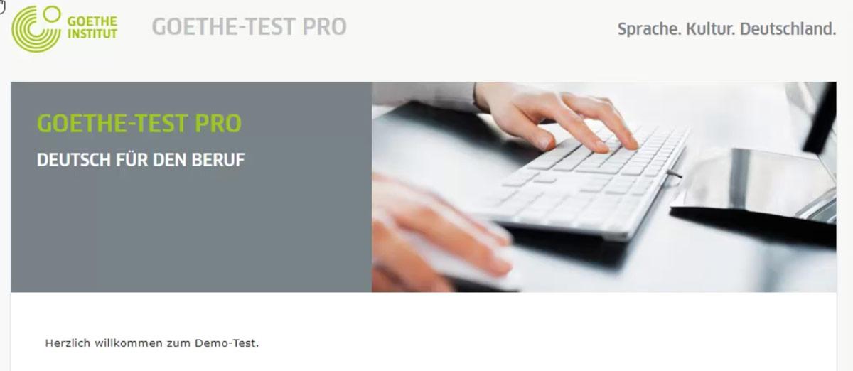 Goethe Test Pro German For Professionals Goethe Institut