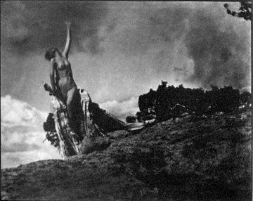 Soul of the Blasted Pine, Anne W. Brigman