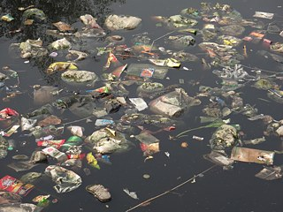 Waste in the river