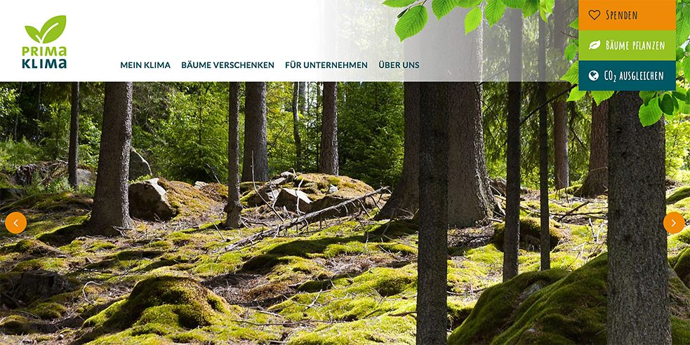<b>Planting trees as gifts</b><br>On the Primaklima website, users can calculate their ecological footprint and donate a recommended sum to climate protection projects. They also have the option of gifting trees to other people. A tree can be planted in Saxony, for example, for € 5; one planted in Nicaragua costs € 3.  Donees receive a certificate showing the location and number of trees growing and turning CO2 into oxygen in their name.