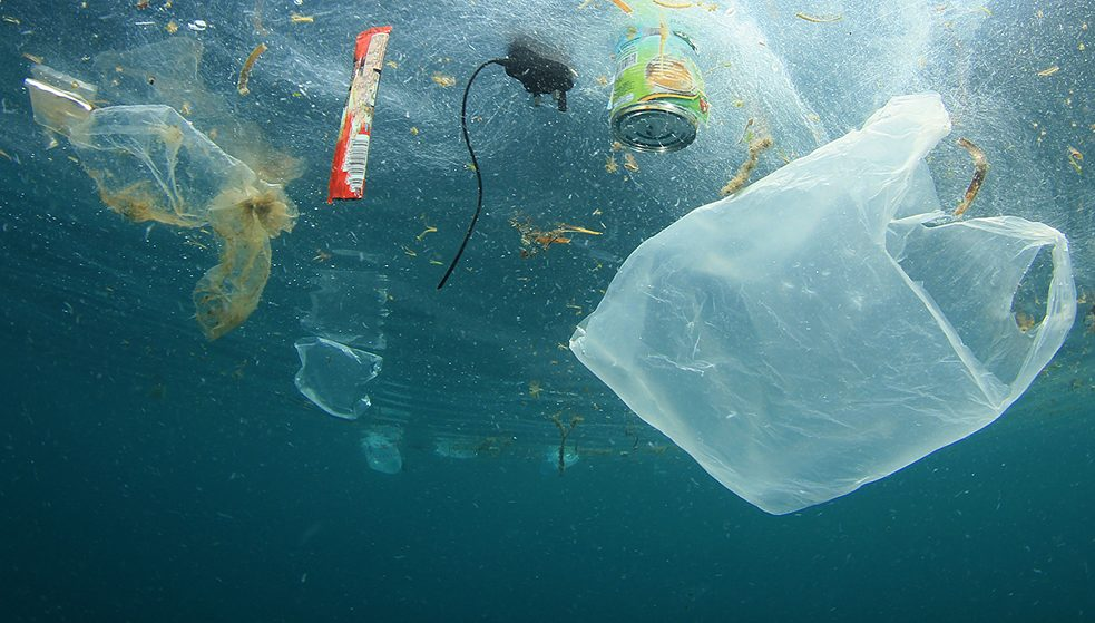 Clean coasts for plastic-free oceans