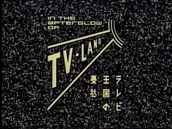 Telexplosion TV-Land Logo