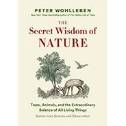 Secret Wisdom of Nature