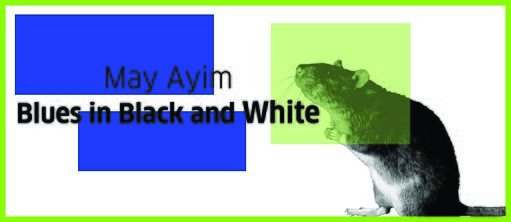 "Book Klub: May Ayim's ""Blues in Black and White"""