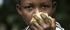 Kenya: Digo girl with mango. The ethnic and linguistic population of the Digos lives near the Indian Ocean and is native to Kwale County in southern Kenya and Tanga in northern Tanzania.