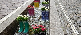 Wellingtons as planters in a Bächle.
