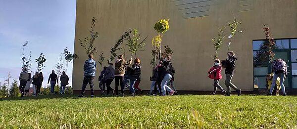 Unsere Schule soll umweltfreundlicher werden