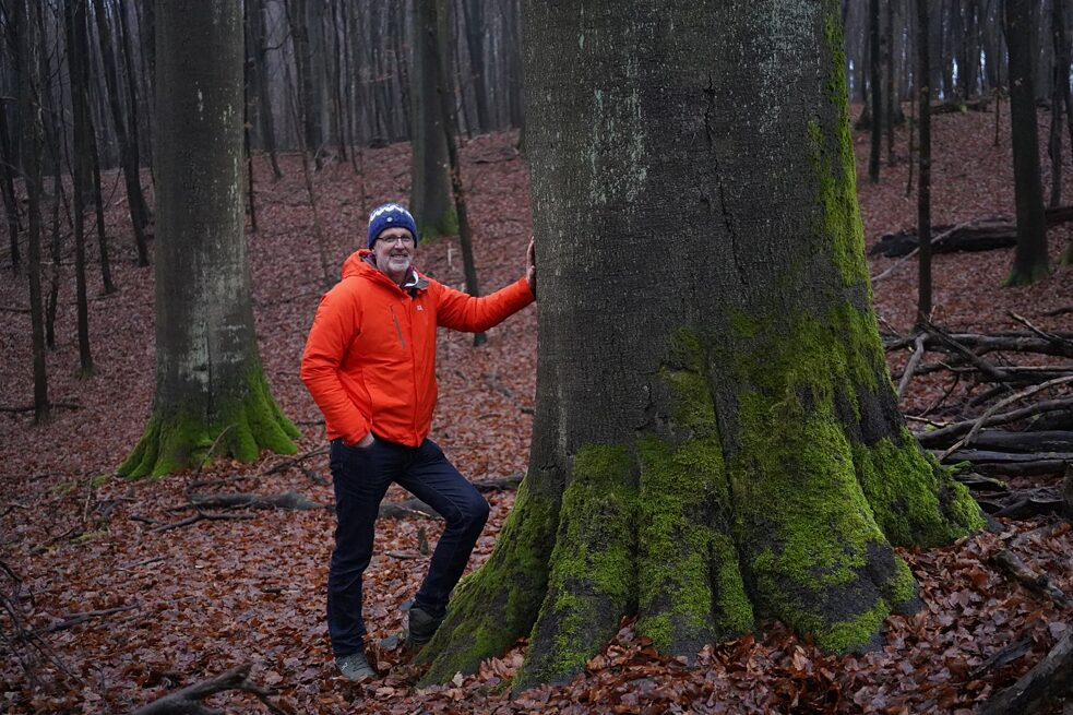 Peter Wohlleben in his forest in Hümmel, Germany